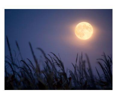 Coïncidence : Une Lune des Moissons en un Vendredi 13 !